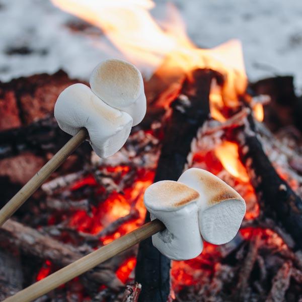 Marshmallow Campfire - Snowmobiling - Swan valley idaho winter activities
